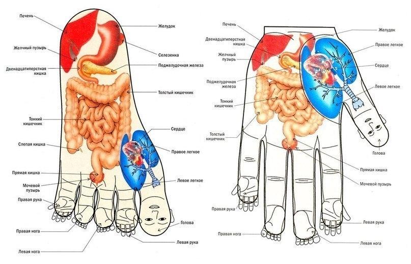 Массаж ног и рук